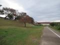 201103河川敷から木津川右岸へ