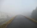 201108ますます霧が深い