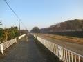 201114路面の荒れた自転車道を進む