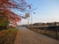 201114リハビリセンター右折で飛鳥川離脱