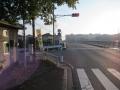 201114寺川に合流