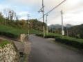 201123石寺の茶畑