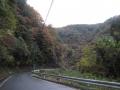 201123秋の山を見ながら下る