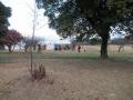 201219平城宮跡ではイベントが