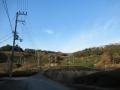 210103和束の茶畑のアップダウンをこなす