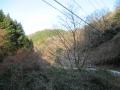 210103井手側大正池ルートとすっかり冬枯れの山