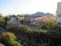 210410帯解寺の線路側の桜