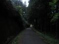210424竹内街道の旧道を下る