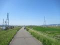 210503宇治川の堤防を西へ