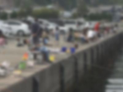 釣り人の姿が絶えない愛知県南知多町の豊浜漁港