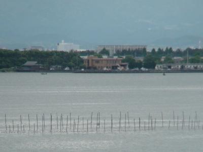 琵琶湖南湖木浜漁港沖(6月1日(9時40分頃)