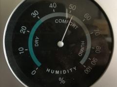湿度52%(6月20日15時)