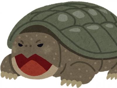 カミツキガメ(いらすとや)