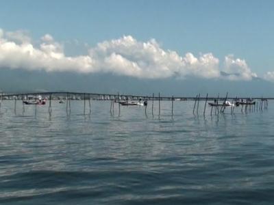 木浜沖の船団