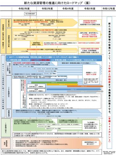 新たな資源管理の推進に向けたロードマップ(案)