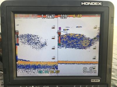 下物沖の魚探の映像