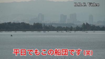 穏やかな琵琶湖!! 木浜沖は平日でもこの船団です(YouTubeムービー)