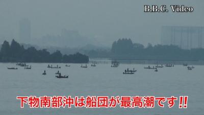 穏やかな土曜日の琵琶湖!! 木浜沖の船団は最高潮(YouTubeムービー)