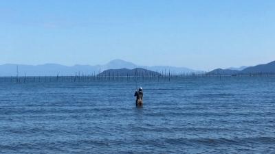 秋晴れ6日!! やっと風がましになった琵琶湖(YouTubeムービー)