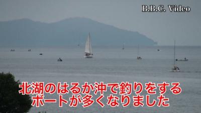 曇り空の日曜日!! 船団ボートが琵琶湖北湖に進出か!?(YouTubeムービー)