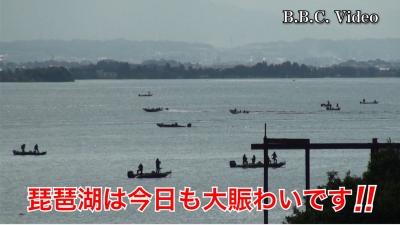 晴天微風の日曜日!! 琵琶湖は今日も大賑わいです(YouTubeムービー)