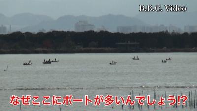 穏やかな日曜日 なぜか木浜北部沖に船団が・・・ #今日の琵琶湖(YouTube ムービー)