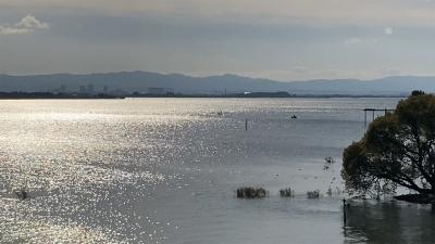 月曜日は西風 ガラ空きの琵琶湖 iPhoneSE2画質テスト編(YouTubeムービー)