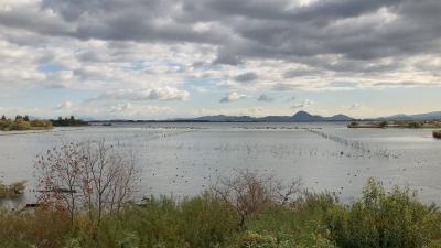 山ノ下湾から眺めた南湖は西寄りの風でざわついてます #今日の琵琶湖(YouTubeムービー)