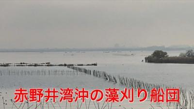 山ノ下湾から眺めた南湖!! 赤野井湾沖に例のアレが・・・ #今日の琵琶湖(YouTubeムービー)