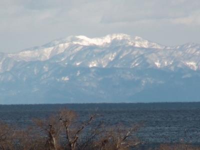 琵琶湖大橋西詰めから北の方の雪を被った山がくっきりと見えました(1月9日12時頃)