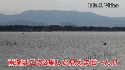 風が弱まってもガラ空き!! 成人の日の3連休最終日の琵琶湖 #今日の琵琶湖(YouTubeムービー)