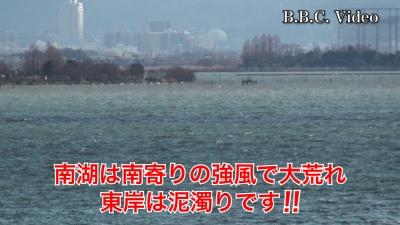 またも南寄りの強風で大荒れの琵琶湖南湖!! 東岸は泥濁りです #今日の琵琶湖(YouTubeムービー)