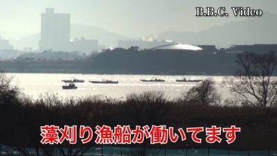 山ノ下湾から眺めた琵琶湖南湖!! 漁船が藻刈り仕事してます #今日の琵琶湖(YouTubeムービー)