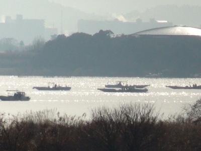 琵琶湖南湖烏丸半島沖で水草の根こそぎ刈り取り中の漁船(1月26日9時30分頃)
