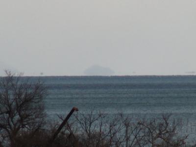 琵琶湖大橋西詰めから眺めた竹生島(1月29日11時頃)