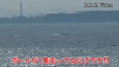 日曜日の琵琶湖はまたも強風!! 南湖は釣り中のボートが1隻も見えず #今日の琵琶湖(YouTubeムービー)