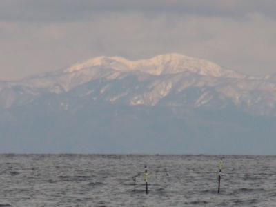 真っ白に冠雪した湖北の山がくっきりと見えました。横山岳でしょうか!?(2月8日12時20分頃)