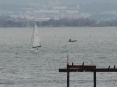 琵琶湖南湖は南西の強風で荒れてます(2月19日12時50分頃)