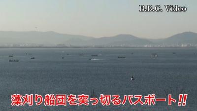 堅田沖の水草根こそぎ刈り取り!! #今日の琵琶湖(YouTubeムービー)