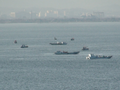 琵琶湖南湖堅田沖で藻刈り中の漁船(2月25日8時頃)