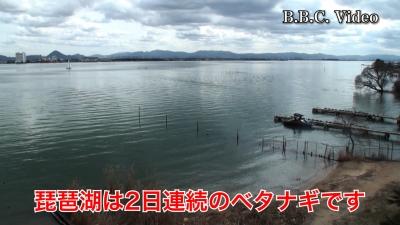 曇天微風の琵琶湖南湖!! 2日連続のベタナギです #今日の琵琶湖(YouTubeムービー)