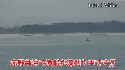 琵琶湖大橋西詰めから眺めた南湖!! 赤野井沖で藻刈り中です #今日の琵琶湖(YouTubeムービー)