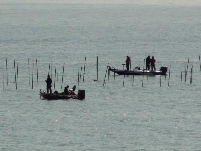 堅田沖で釣り中のボート(3月14日11時頃)