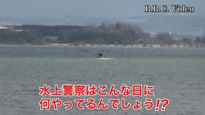 イズミヤ堅田店横のサクラが開花!! 琵琶湖は強風 #今日の琵琶湖(YouTubeムービー)