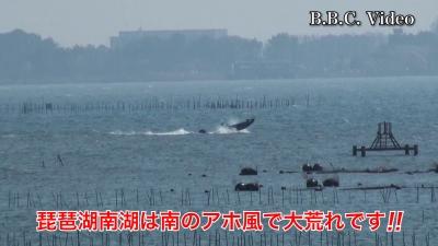 南のアホ風で大荒れ!! 山ノ下湾から眺めた琵琶湖南湖 #今日の琵琶湖(YouTubeムービー)