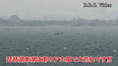 天候回復した琵琶湖!! 南のアホ風で南湖は大荒れ #今日の琵琶湖(YouTubeムービー)