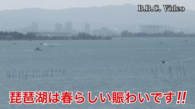 春本番らしい賑わい!! 日曜日もいい天気の琵琶湖 #今日の琵琶湖(YouTubeムービー