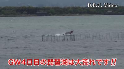 GW4日目!! 南西の強風で大荒れの琵琶湖 #今日の琵琶湖(YouTubeムービー)
