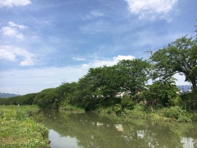 いい天気の堅田周辺(5月12日11時頃)