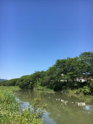 堅田付近は快晴でカラッとした風が吹く五月晴れの気持ちいい天気でした(5月14日10時頃)